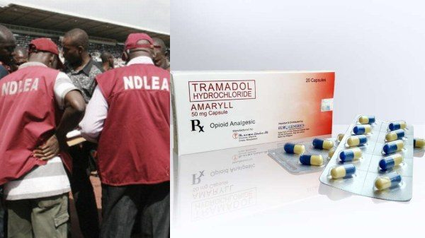 BUSTED!!! NDLEA arrests 7 Kano Airport Officials Who Plants Drugs On Passengers' Luggage, that also led to the execution of the Nigerian woman who was caught with hard drugs in Saudi Arabia(photos)