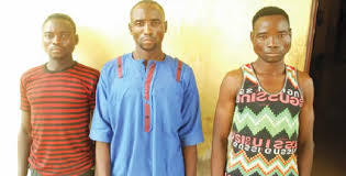 Three brothers arrested for ritual killing in Niger state