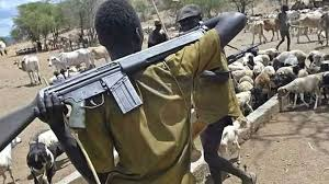 Fulani Herdsmen kills 20 people in Enugu