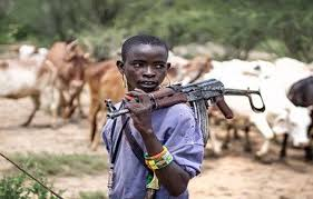 Fulani herdsmen invades a secondary school in Anambra state (photos)