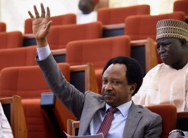 Disregard the intervention request from the state governors – Shehu Sani AdvicesBuhari