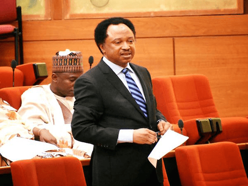 Senator Shehu Sani kicks against President Buhari's Radio Station and Death Sentence On Herdsmen