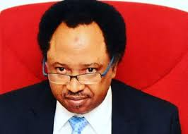 The reason why OBJ, Jonathan and Other Former Leaders Boycotted May 29, June 12 Democracy Celebration Day – Shehu Sani