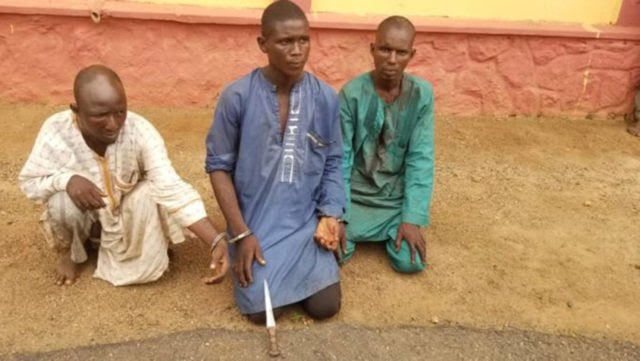 3 Herdsmen who beheaded a farmer in Ogun state, Arrested