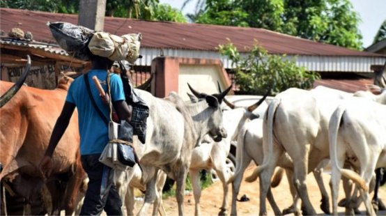 Farmer stabbed to death by  herdsmen in Ogun