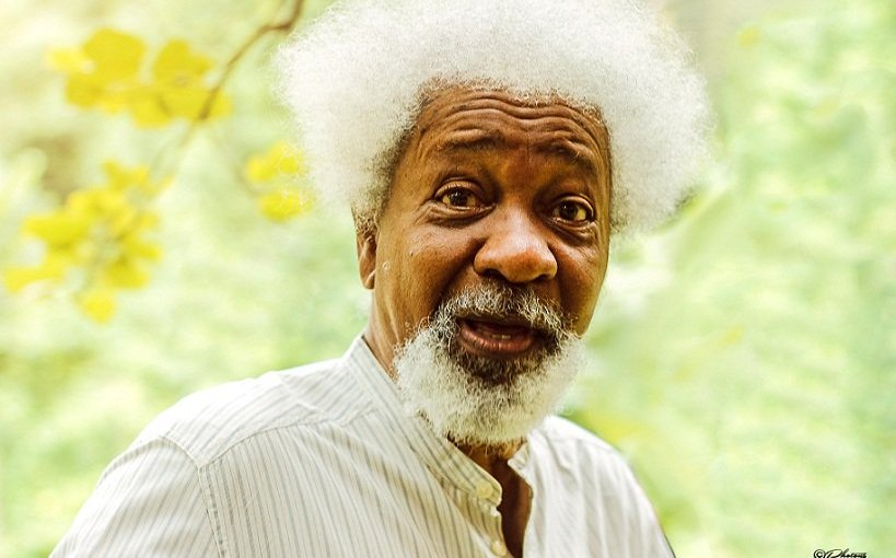 Nigeria is building a generation of illiterates – Wole Soyinka