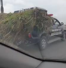 Police patrol vehicle being used now as truck to transport grass