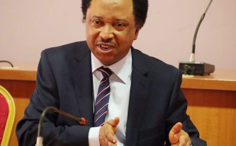 The Autocratic ruling APC will fizzle out with Buhari in 2023 – Shehu Sani