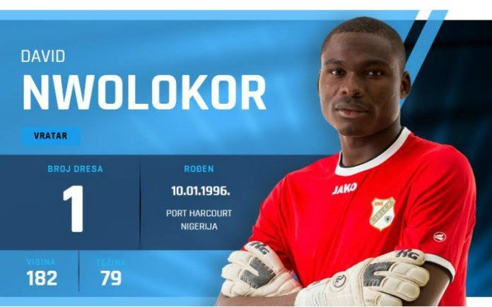 Croatia goalkeeper David Nwolokor begs Nigerian coach  Gernot Rohr , to give him a chance