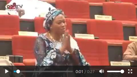 """Buhari Has Achieved A Lot"" – Remi Tinubu(Video)"