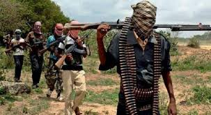 Boko Haram Attacks Parts OfYobe