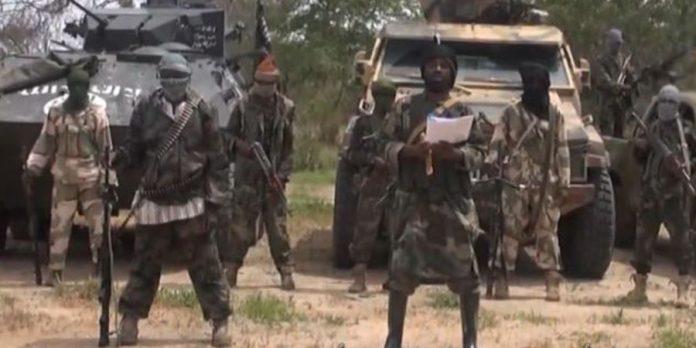 Boko Haram Kills 19 Fulani Herdsmen InGunfight