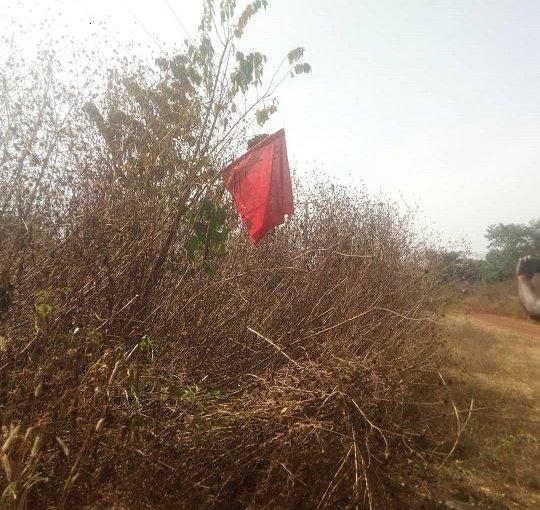 Herdsmen Hoist Flag In Orin-Ekiti, Near Fayemi'sHometown