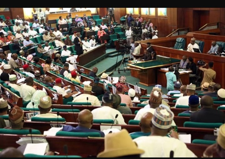 Reps Summon Mamman, Ngige, PENCOM Boss Over FG And Power Sector Workers' Crisis