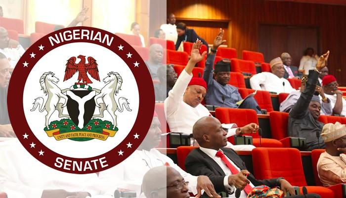 Social Media Bill: Senate Suspends PublicHearing