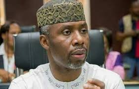 Supreme Court disqualifies Okorocha In-law Uche Nwosu's Candidature