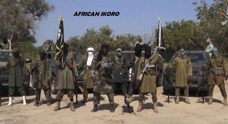 Boko Haram Killed 3 Truck Drivers, Abduct 7 Passengers Along Maiduguri Damaturu Road
