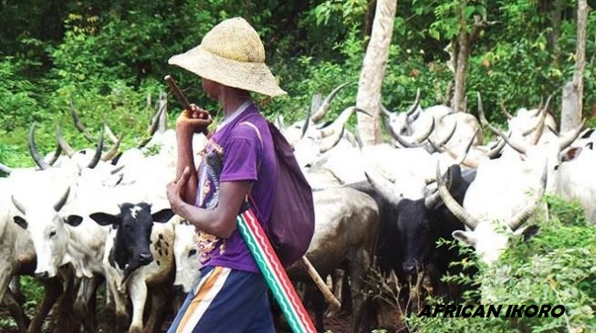 Fulani Herdsmen Has Taken Over Edo Farmlands, Forests, Benin Socio-Cultural Group